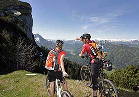 Mountainbike Steinplatte